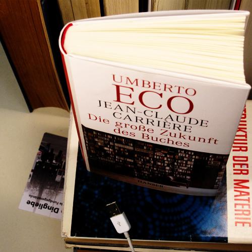 Die große Zukunft des Buches - Cover