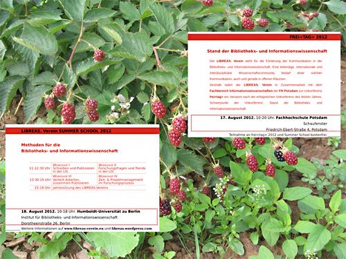 Freit 2012 vor Rubus