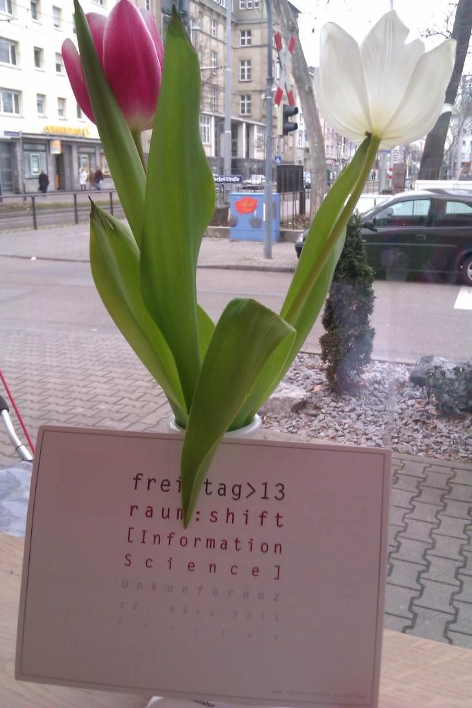 Alles ist auf Zukunft eingestellt: der März bringt hoffentlich den Frühling mit der ersehnten Sonne, Tulpen geben eine Vorahnung.