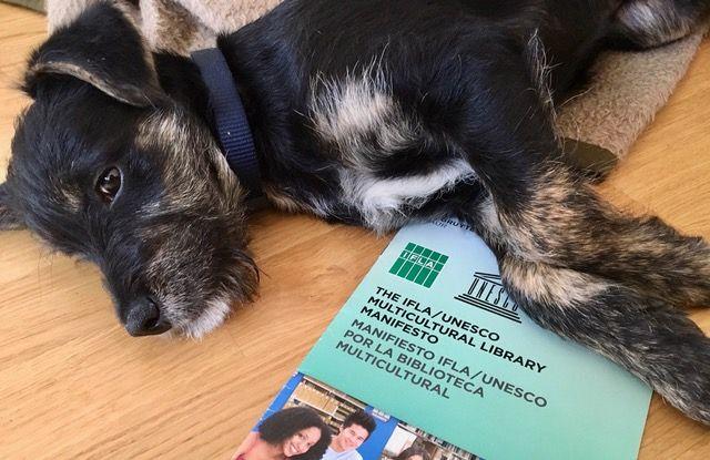 "Symbolbild Hund und Publikation ""The IFLA / UNESCO Multicultural Manifesto"""